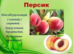 ikt-mp-frukty-09.JPG