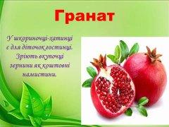 ikt-mp-frukty-11.JPG